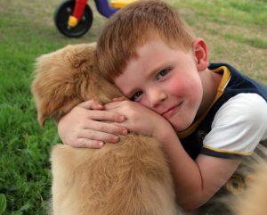 beste-freunde-hund