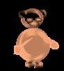 teddy-nordhauser