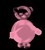 teddy-sachtleben